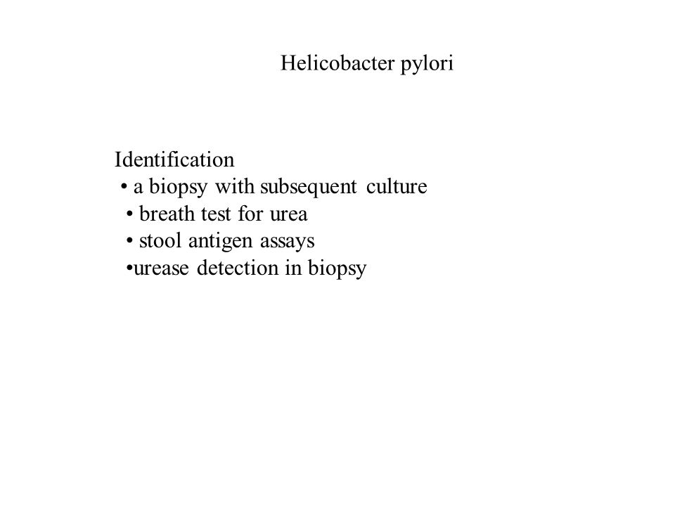 Helicobacter pylori Identification a biopsy with subsequent culture breath test for urea stool antigen assays urease detection in biopsy