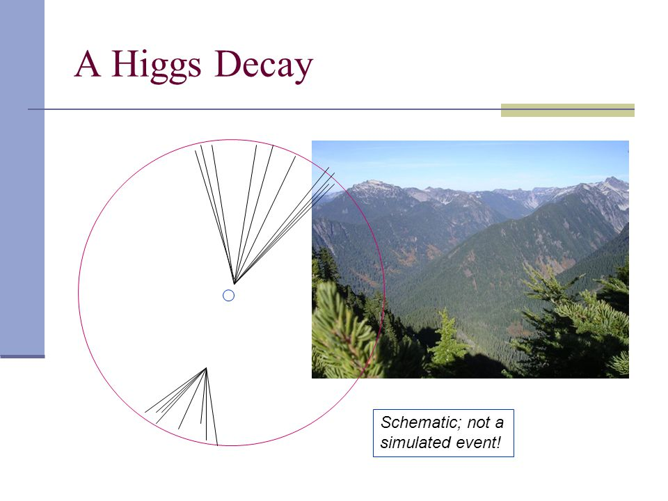 A Higgs Decay Schematic; not a simulated event!