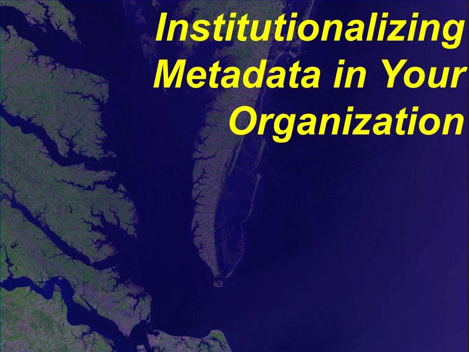 Institutionalizing Metadata in Your Organization