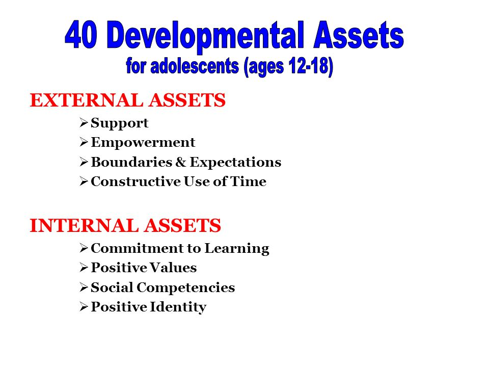 EXTERNAL ASSETS  Support  Empowerment  Boundaries & Expectations  Constructive Use of Time INTERNAL ASSETS  Commitment to Learning  Positive Values  Social Competencies  Positive Identity