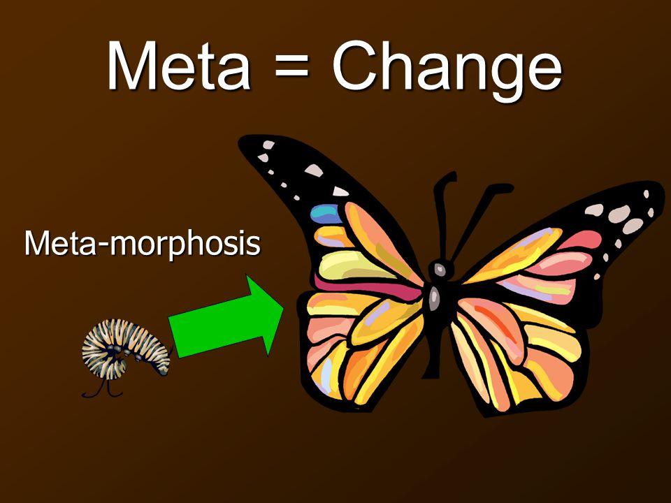 Meta = Change Meta -morphosis