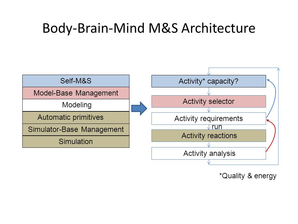 Body-Brain-Mind M&S Architecture Activity reactions Automatic primitives Modeling Model-Base Management Simulator-Base Management Simulation Self-M&S