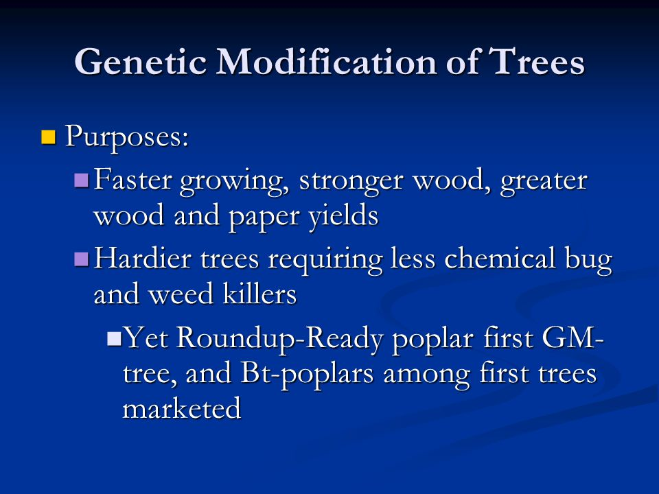 Genetic Modification of Trees Purposes: Purposes: Faster growing, stronger wood, greater wood and paper yields Faster growing, stronger wood, greater