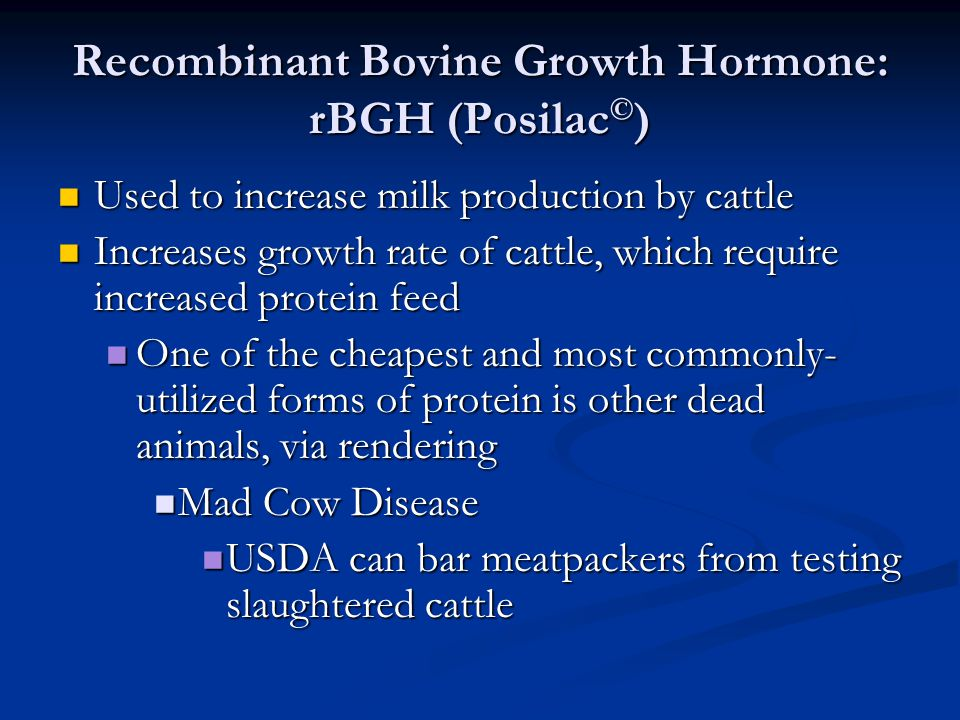 Recombinant Bovine Growth Hormone: rBGH (Posilac © ) Used to increase milk production by cattle Used to increase milk production by cattle Increases g