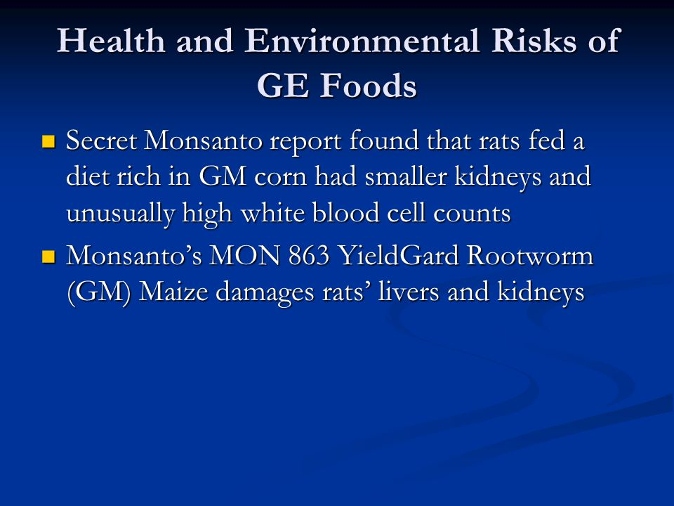 Health and Environmental Risks of GE Foods Secret Monsanto report found that rats fed a diet rich in GM corn had smaller kidneys and unusually high wh