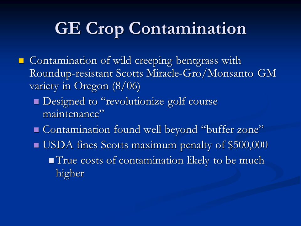 GE Crop Contamination Contamination of wild creeping bentgrass with Roundup-resistant Scotts Miracle-Gro/Monsanto GM variety in Oregon (8/06) Contamination of wild creeping bentgrass with Roundup-resistant Scotts Miracle-Gro/Monsanto GM variety in Oregon (8/06) Designed to revolutionize golf course maintenance Designed to revolutionize golf course maintenance Contamination found well beyond buffer zone Contamination found well beyond buffer zone USDA fines Scotts maximum penalty of $500,000 USDA fines Scotts maximum penalty of $500,000 True costs of contamination likely to be much higher True costs of contamination likely to be much higher