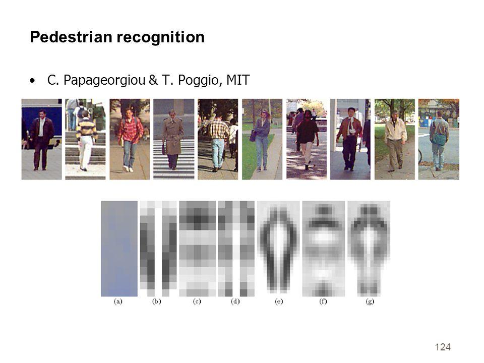 124 Pedestrian recognition C. Papageorgiou & T. Poggio, MIT