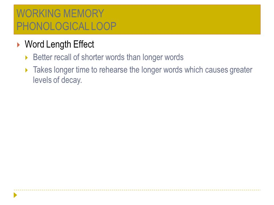 WORKING MEMORY PHONOLOGICAL LOOP  Word Length Effect  Better recall of shorter words than longer words  Takes longer time to rehearse the longer wo