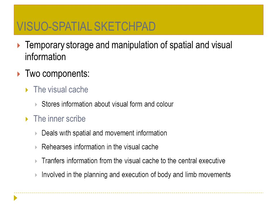 VISUO-SPATIAL SKETCHPAD  Temporary storage and manipulation of spatial and visual information  Two components:  The visual cache  Stores informati