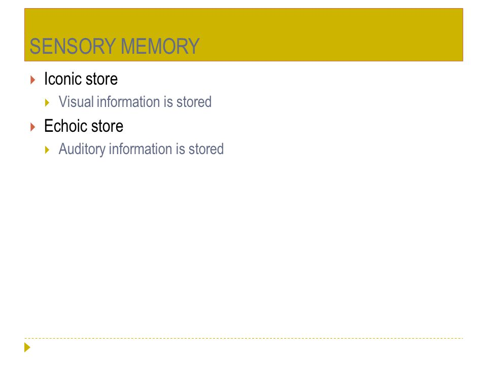 SENSORY MEMORY  Iconic store  Visual information is stored  Echoic store  Auditory information is stored