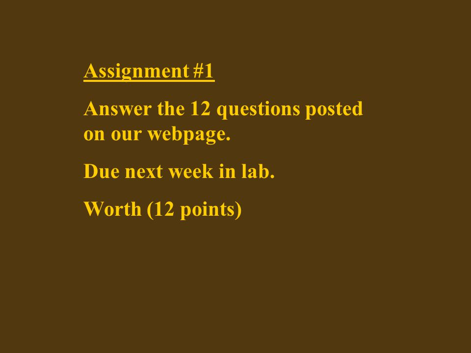 Assignment #1 Answer the 12 questions posted on our webpage.