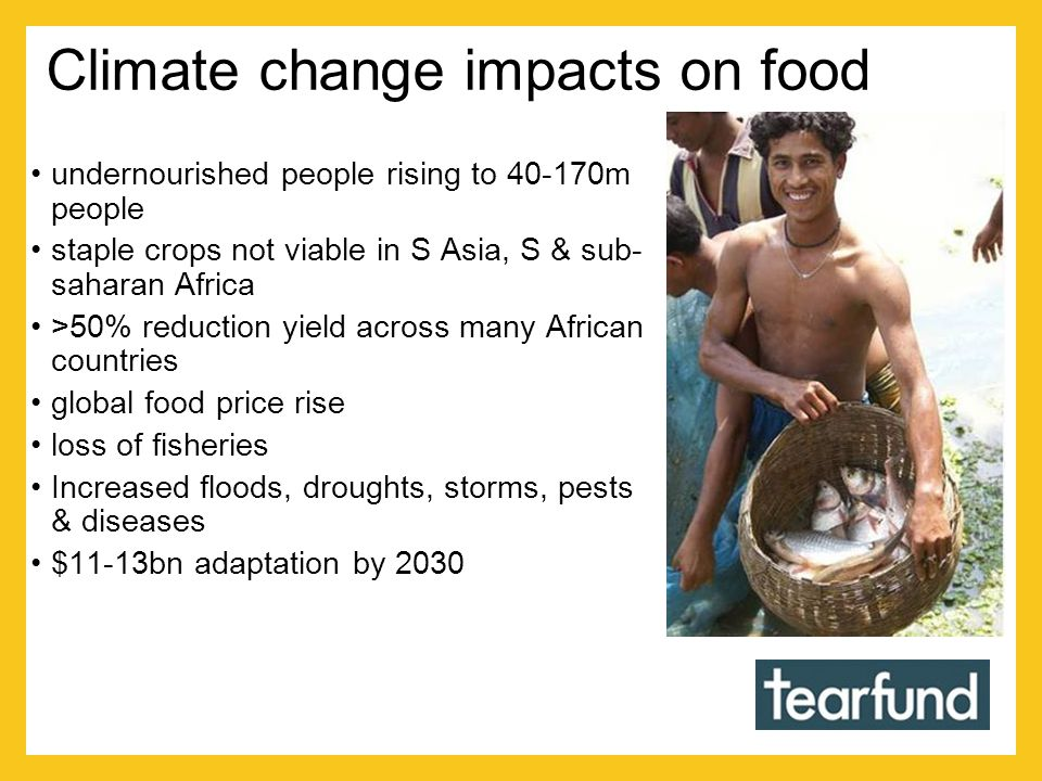 Climate change impacts on food undernourished people rising to 40-170m people staple crops not viable in S Asia, S & sub- saharan Africa >50% reduction yield across many African countries global food price rise loss of fisheries Increased floods, droughts, storms, pests & diseases $11-13bn adaptation by 2030