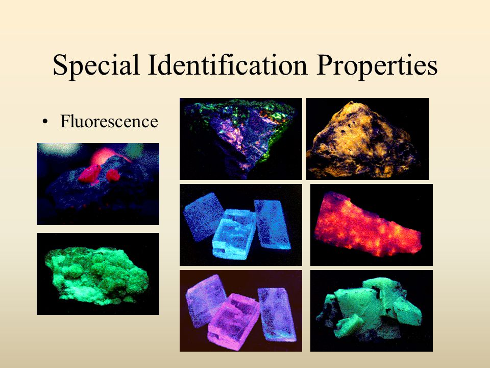 Special Identification Properties Fluorescence