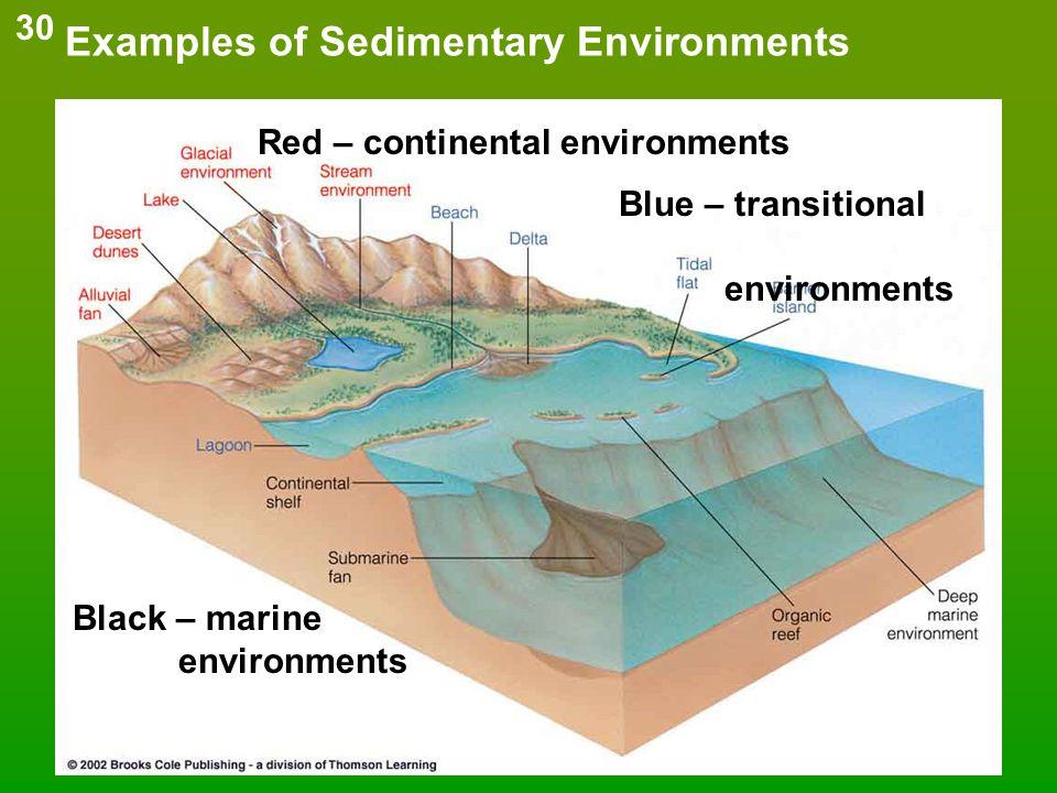 Examples of Sedimentary Environments Red – continental environments Blue – transitional environments Black – marine environments 30