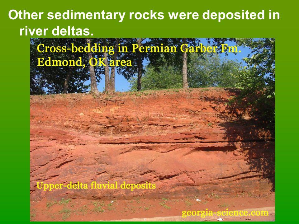 Other sedimentary rocks were deposited in river deltas.