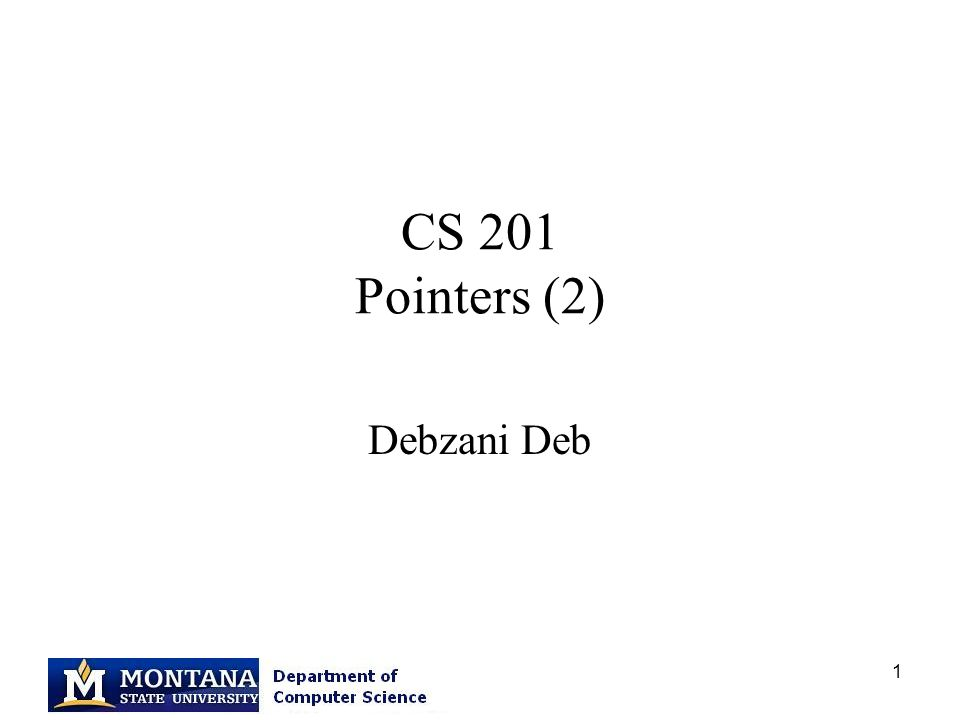 1 CS 201 Pointers (2) Debzani Deb