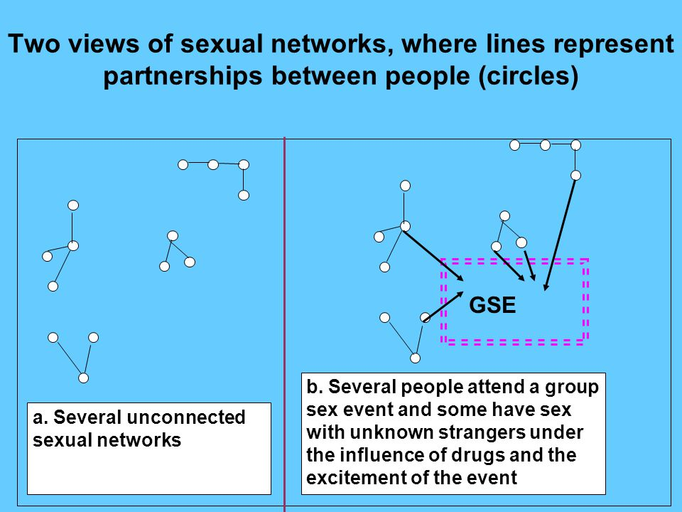 Two views of sexual networks, where lines represent partnerships between people (circles) a. Several unconnected sexual networks b. Several people att