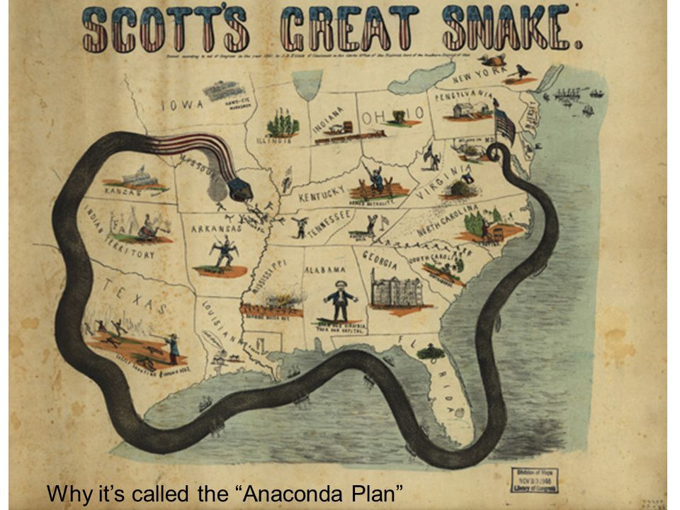 Why it's called the Anaconda Plan