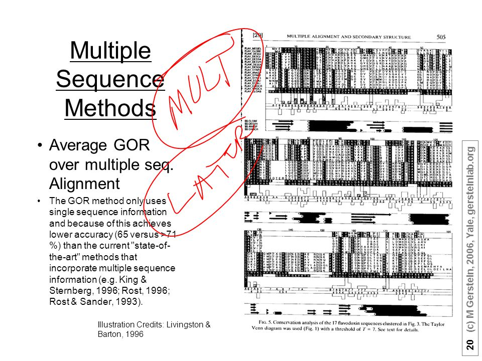 20 (c) M Gerstein, 2006, Yale, gersteinlab.org Multiple Sequence Methods Average GOR over multiple seq. Alignment The GOR method only uses single sequ