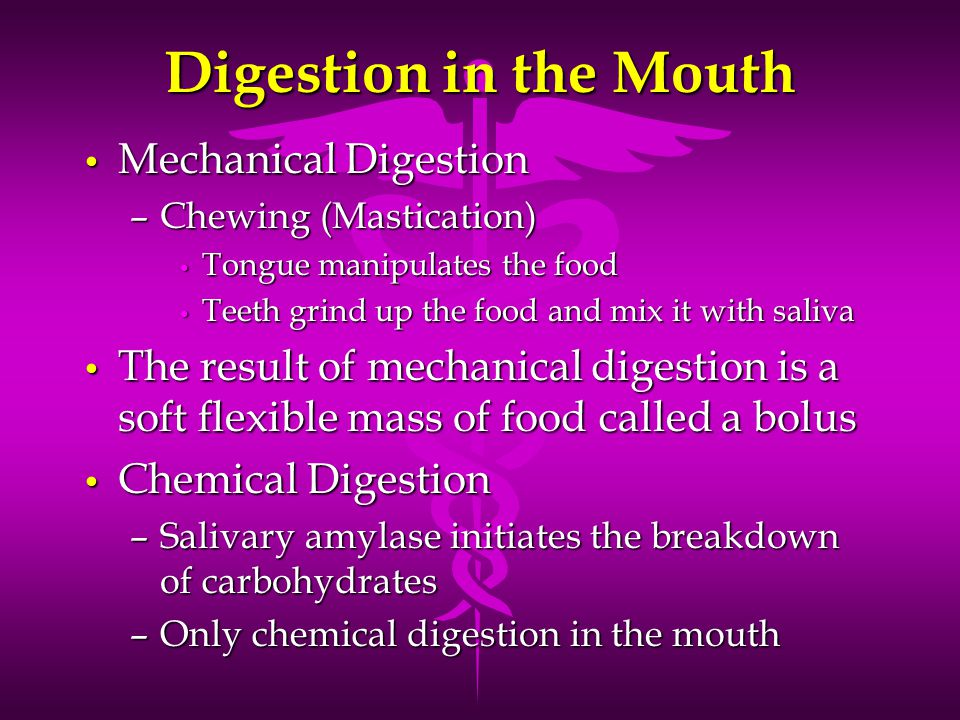 Digestion in the Mouth Mechanical Digestion Mechanical Digestion –Chewing (Mastication) Tongue manipulates the food Tongue manipulates the food Teeth