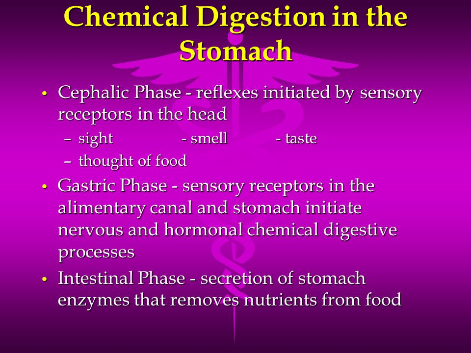 Chemical Digestion in the Stomach Cephalic Phase - reflexes initiated by sensory receptors in the head Cephalic Phase - reflexes initiated by sensory