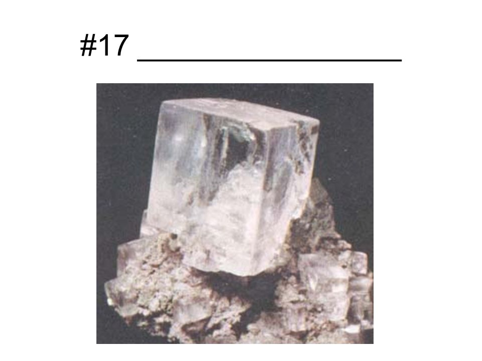 #17 ________________