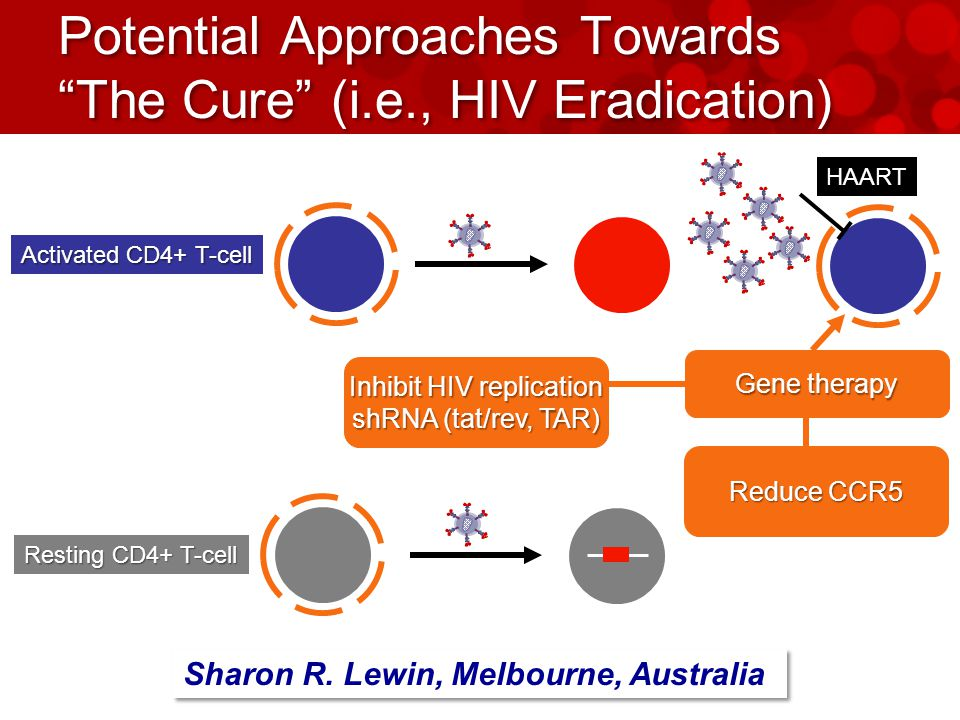 Potential Approaches Towards The Cure (i.e., HIV Eradication) Activated CD4+ T-cell Resting CD4+ T-cell HAART Sharon R.