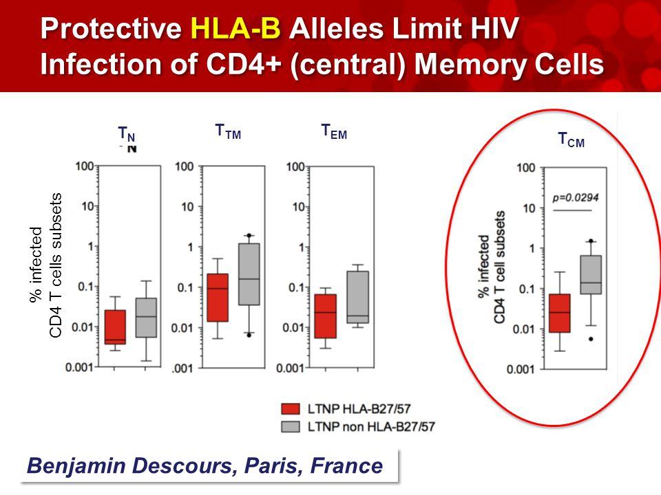 Protective HLA-B Alleles Limit HIV Infection of CD4+ (central) Memory Cells TNTN T CM T TM T EM % infected CD4 T cells subsets Benjamin Descours, Paris, France