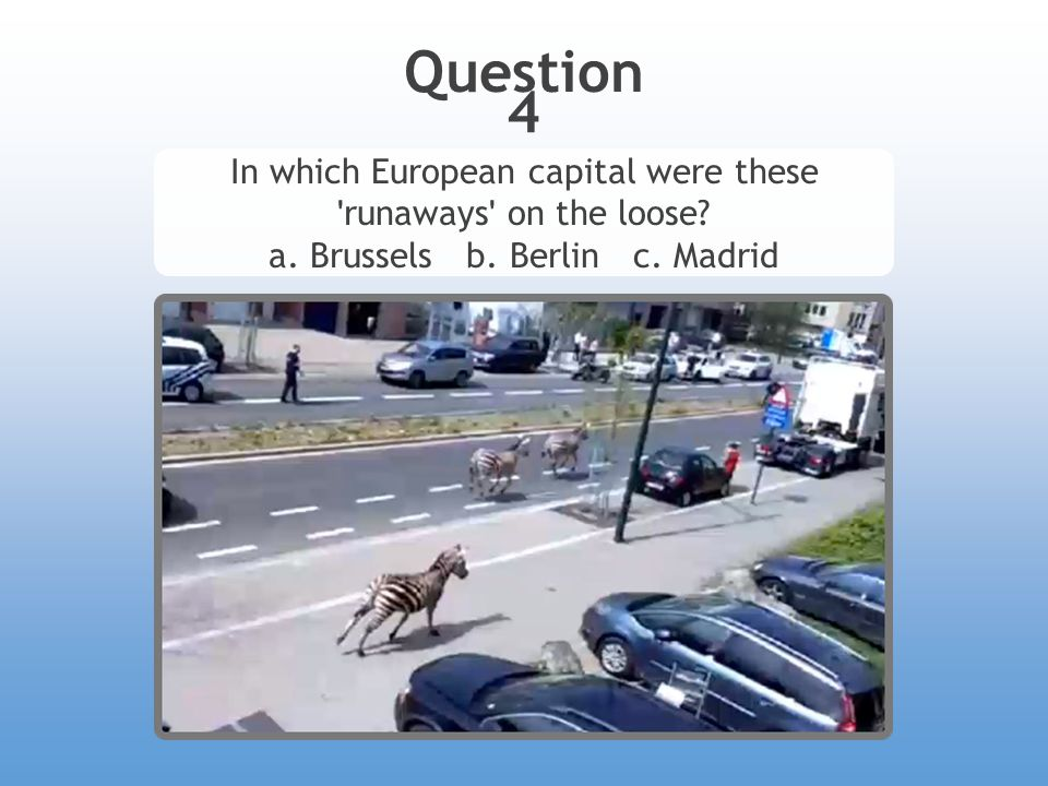 Question 4 In which European capital were these runaways on the loose.