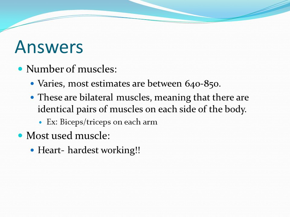 Answers Number of muscles: Varies, most estimates are between 640-850.