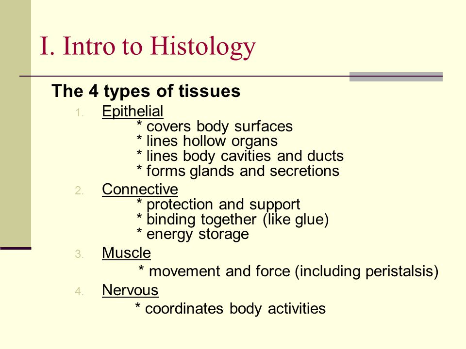 The 4 types of tissues 1. Epithelial * covers body surfaces * lines hollow organs * lines body cavities and ducts * forms glands and secretions 2. Con