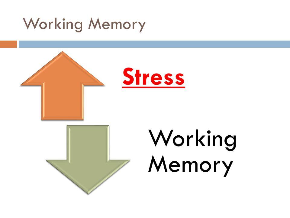 Working Memory Stress Working Memory