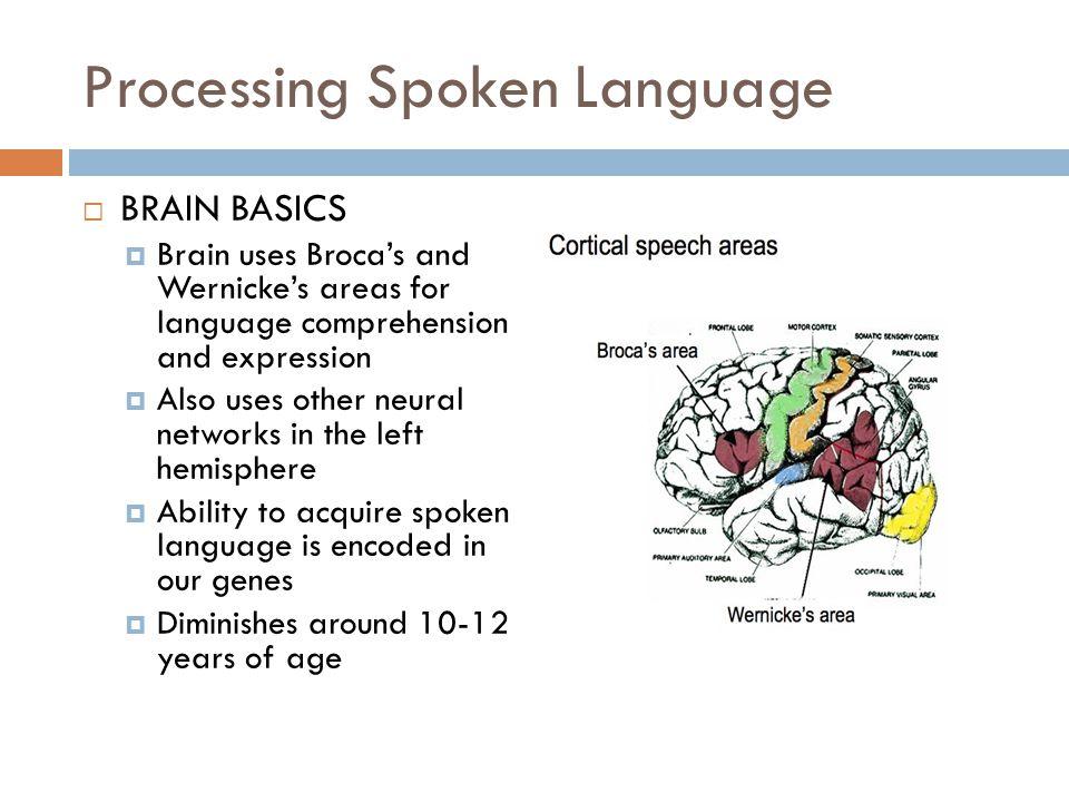 Phonemic awareness…