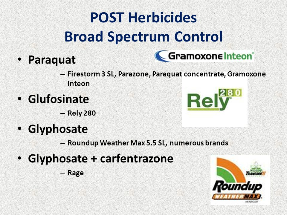 POST Herbicides Broad Spectrum Control Paraquat – Firestorm 3 SL, Parazone, Paraquat concentrate, Gramoxone Inteon Glufosinate – Rely 280 Glyphosate –