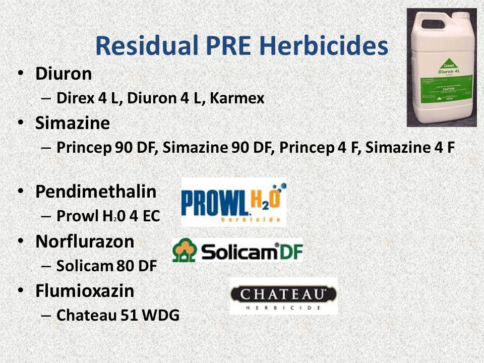 Residual PRE Herbicides Diuron – Direx 4 L, Diuron 4 L, Karmex Simazine – Princep 90 DF, Simazine 90 DF, Princep 4 F, Simazine 4 F Pendimethalin – Prowl H 2 0 4 EC Norflurazon – Solicam 80 DF Flumioxazin – Chateau 51 WDG
