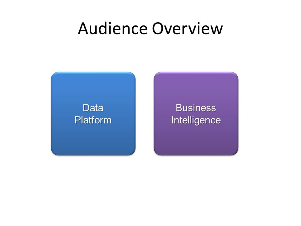 Business Intelligence Data Platform Audience Overview