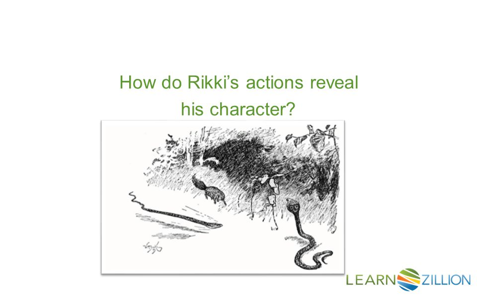 How do Rikki's actions reveal his character