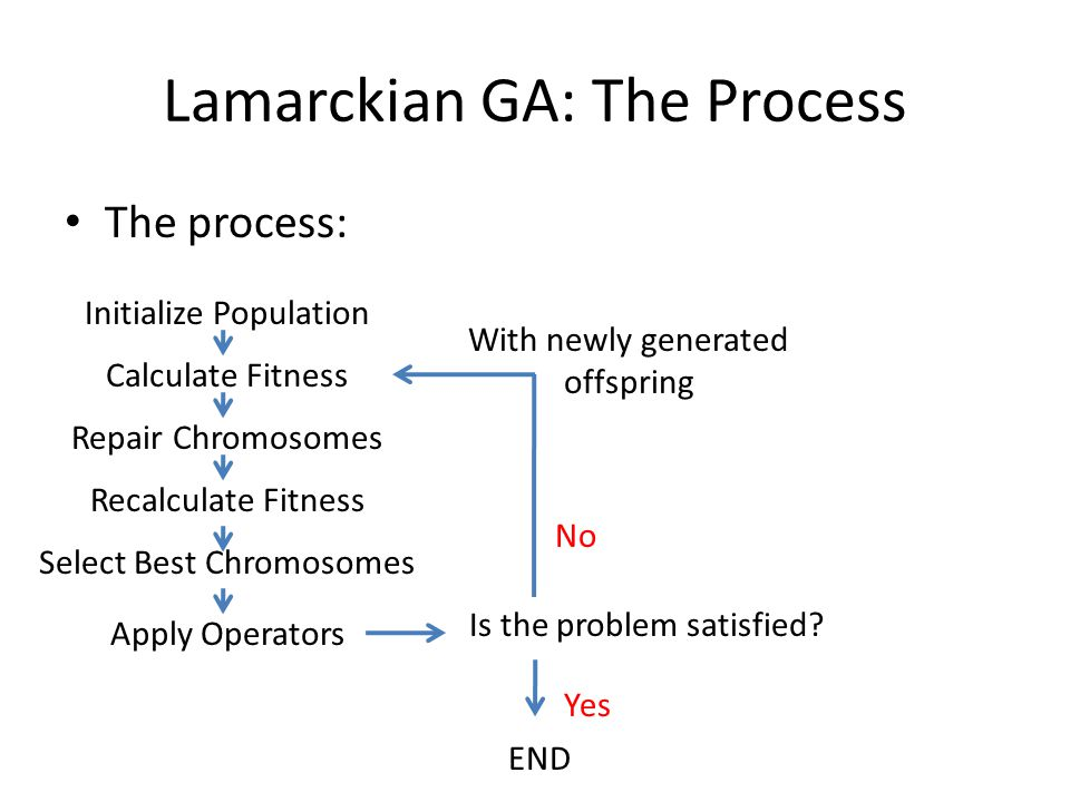 Lamarckian GA: The Process The process: Initialize Population Calculate Fitness Repair Chromosomes Recalculate Fitness Select Best Chromosomes Apply O