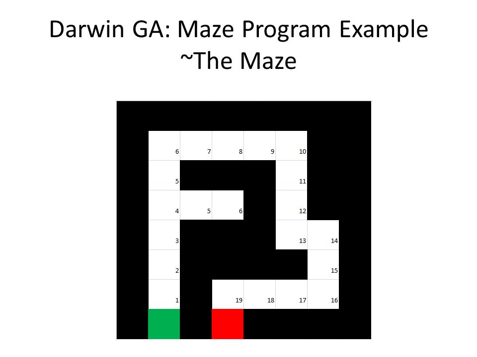 Darwin GA: Maze Program Example ~The Maze