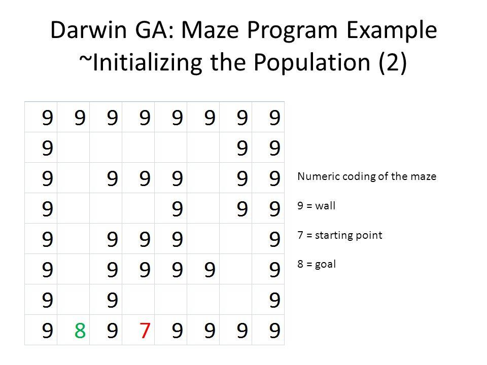 Darwin GA: Maze Program Example ~Initializing the Population (2) Numeric coding of the maze 9 = wall 7 = starting point 8 = goal