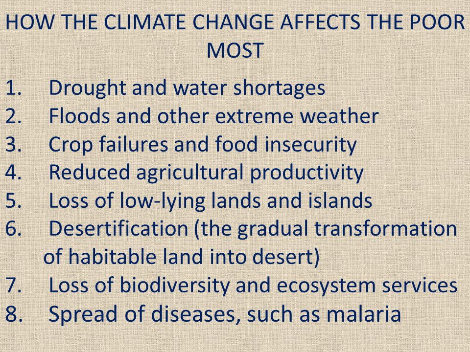 4.REDUCED AGRICULTURAL PRODUCTIVITY 4.1.