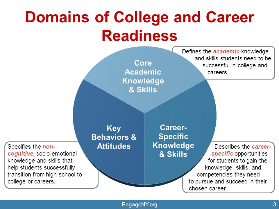 Domains of College and Career Readiness EngageNY.org3 Defines the academic knowledge and skills students need to be successful in college and careers.