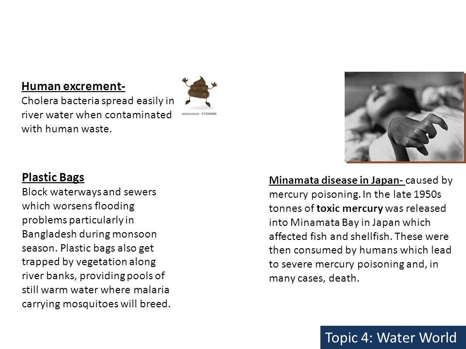 Minamata disease in Japan- caused by mercury poisoning.