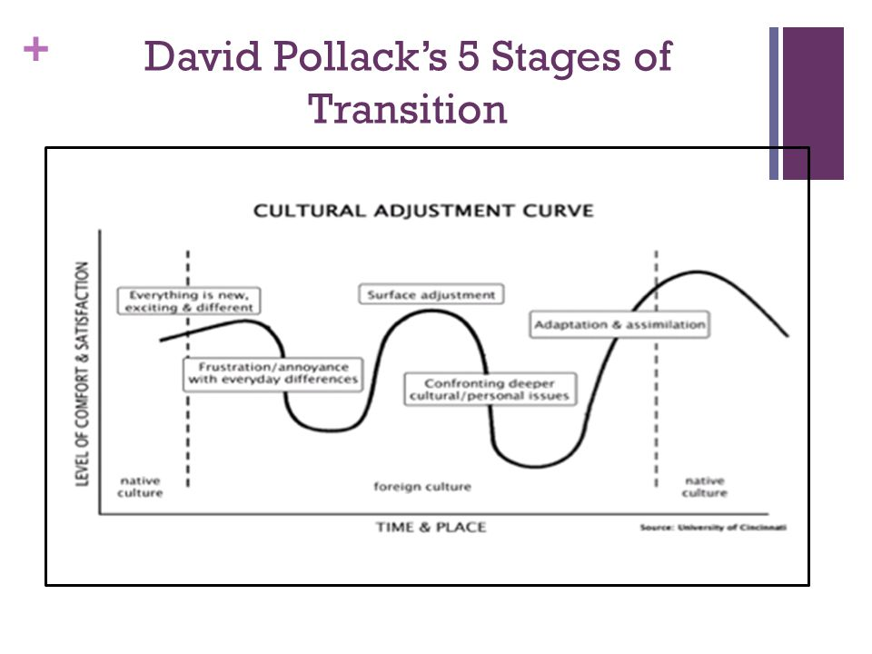 + David Pollack's 5 Stages of Transition