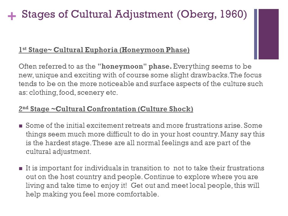 + Stages of Cultural Adjustment (Oberg, 1960) 1 st Stage~ Cultural Euphoria (Honeymoon Phase) Often referred to as the honeymoon phase.