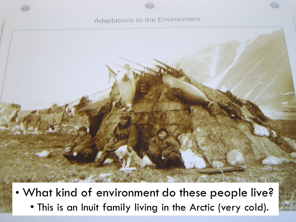What kind of environment do these people live? This is an Inuit family living in the Arctic (very cold).