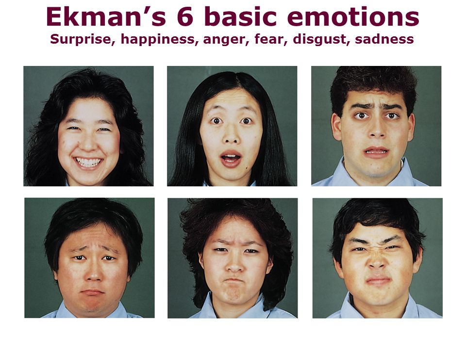 Ekman's 6 basic emotions Surprise, happiness, anger, fear, disgust, sadness