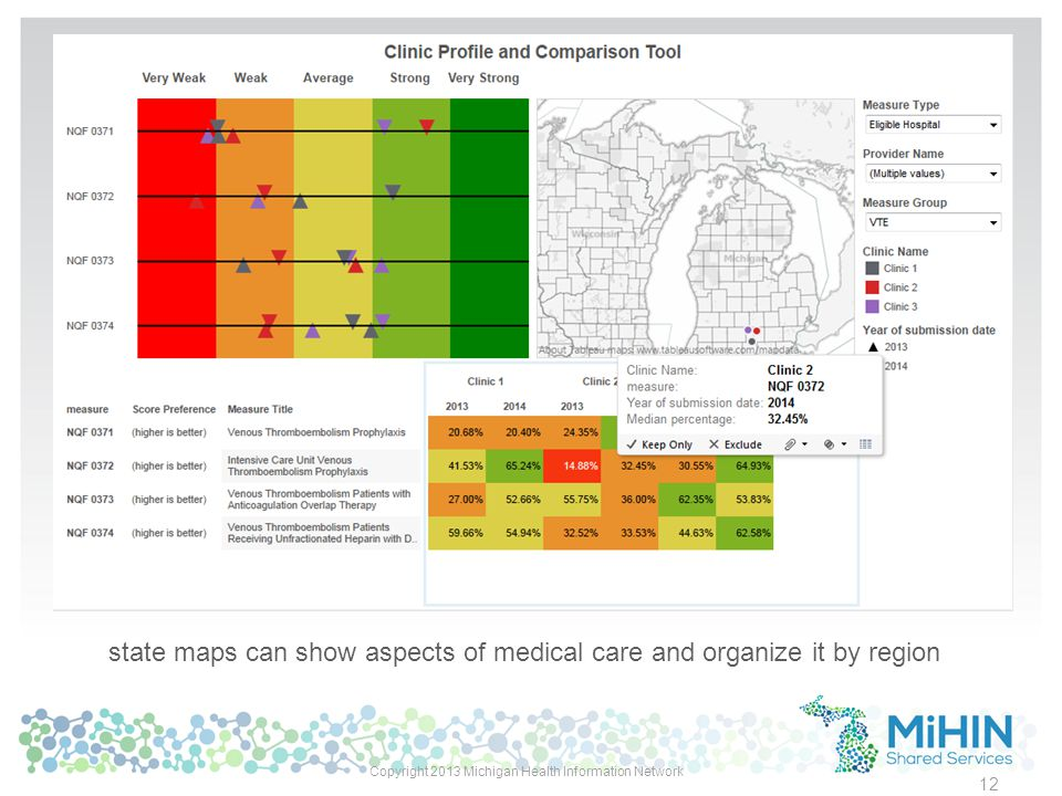 state maps can show aspects of medical care and organize it by region Copyright 2013 Michigan Health Information Network 12