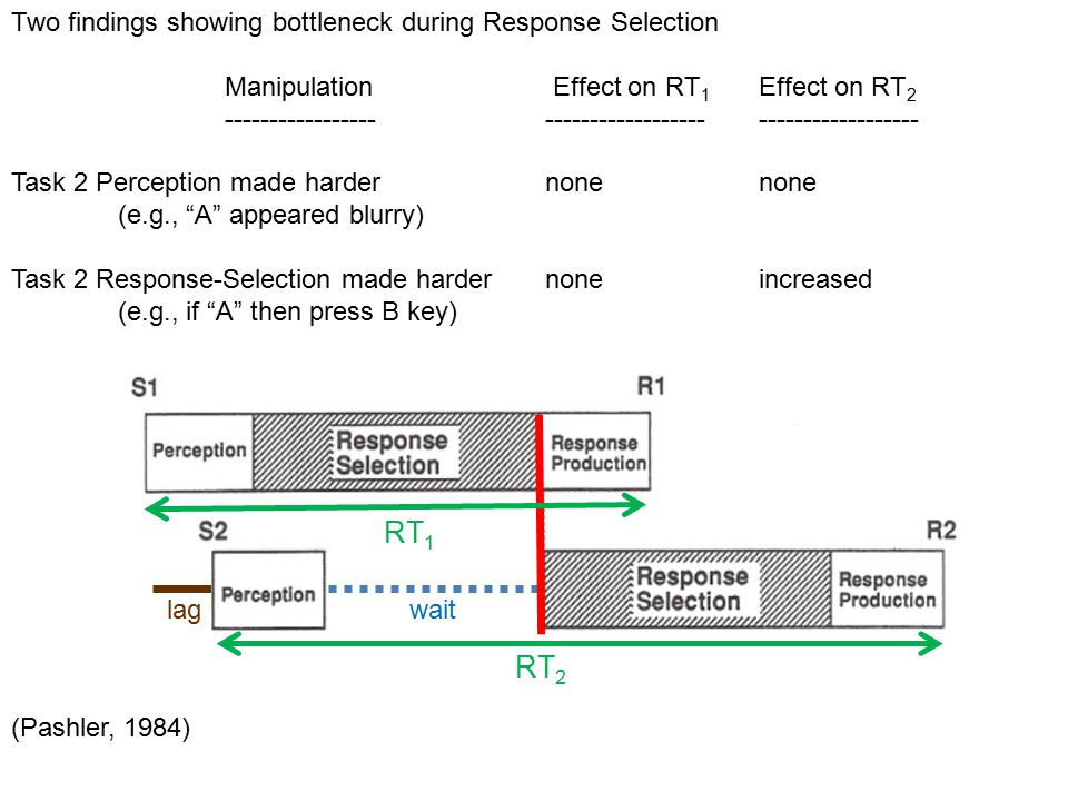 Two findings showing bottleneck during Response Selection Manipulation Effect on RT 1 Effect on RT 2 ----------------------------------------------------- Task 2 Perception made harder nonenone (e.g., A appeared blurry) Task 2 Response-Selection made harder noneincreased (e.g., if A then press B key) (Pashler, 1984) RT 2 lag wait RT 1