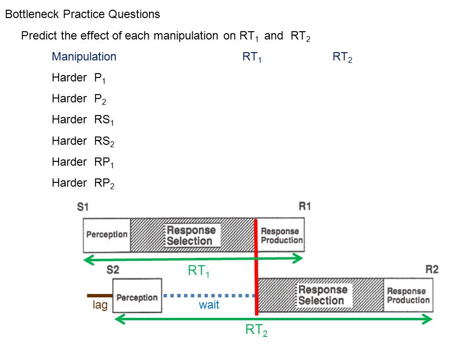 Bottleneck Practice Questions Predict the effect of each manipulation on RT 1 and RT 2 Manipulation RT 1 RT 2 Harder P 1 increaseincrease Harder P 2 none none Harder RS 1 increase increase Harder RS 2 none increase Harder RP 1 increase none Harder RP 2 none increase RT 2 lag wait RT 1